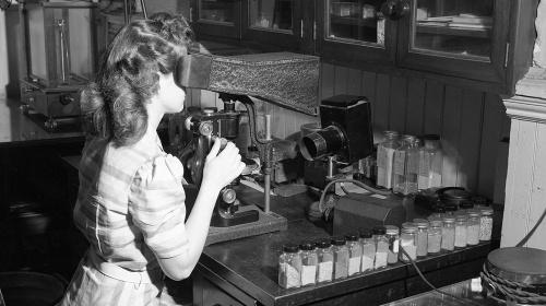 Dones i ciència: la visió des de les institucions de recerca d'excel·lència