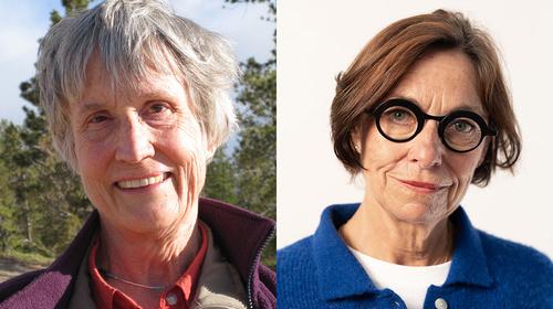 Conversation with Donna Haraway and Vinciane Despret