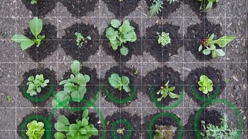 Somiar el futur: Agricultura