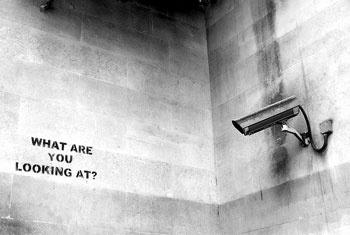 L'Estat de la vigilància: