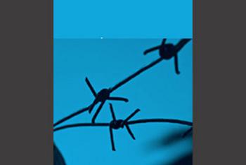 Encarnar l'escriptura: traduir la literatura concentracionària