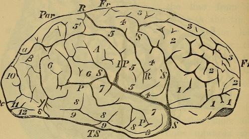 Manipulation of Consciousness