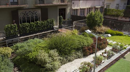 Les cobertes verdes, elements clau per aconseguir una ciutat més verda i sostenible