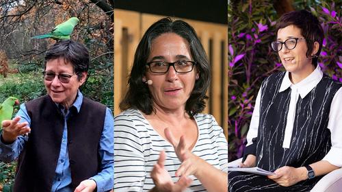 Conversa amb Anna Tsing, Victoria Reyes García i Maria Ptqk