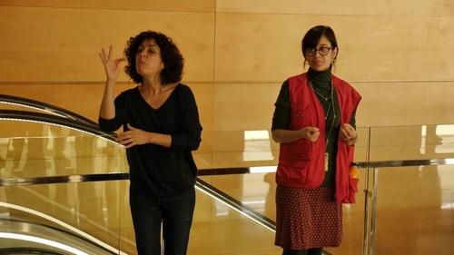 «Quantum» in sign language