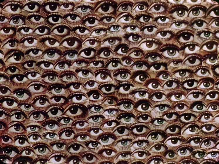 Imatge de l'activitat: L'experiència manipulada