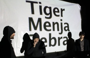 Tiger Menja Zebra a l'Emergència!2013