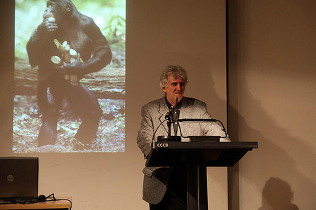 Evolució i cultura. Homo sapiens: una espècie desconeguda