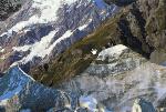 Climbing, Jesse McLean, Estats Units, 2011
