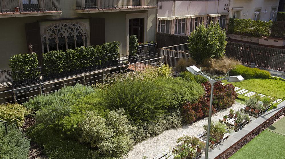 Imatge de l'activitat: Les cobertes verdes, elements clau per aconseguir una ciutat més verda i sostenible