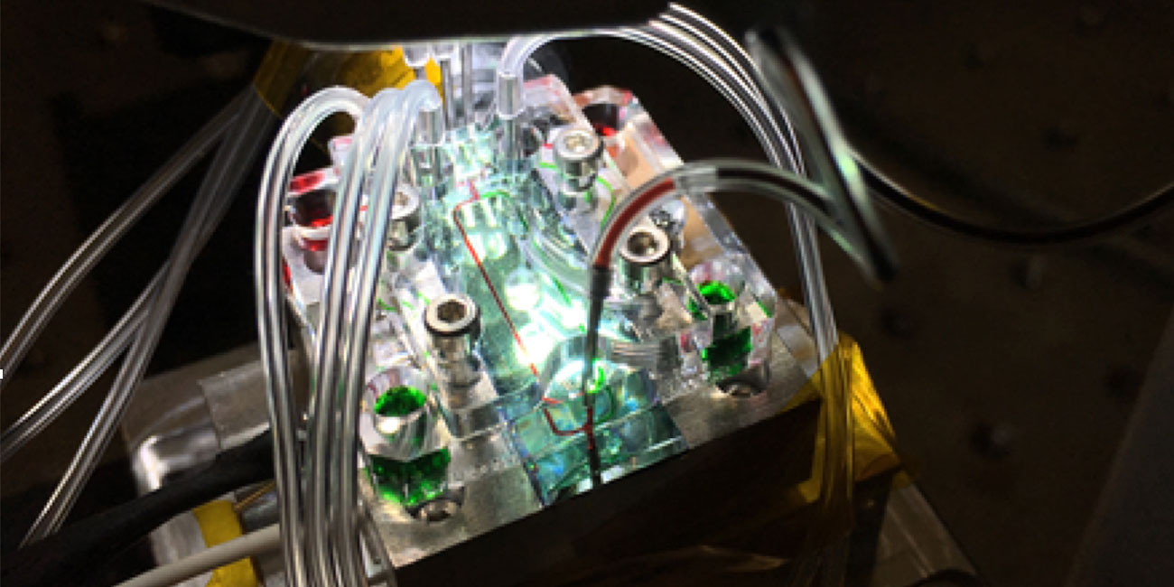 Imagen de: Tecnología cuántica y cáncer