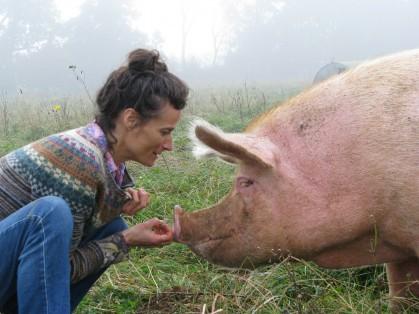 Fuera de programa: Presenta PIG BUSINESS