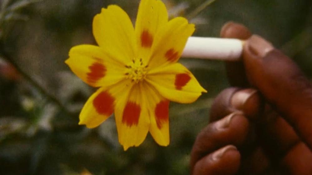 """Fotograma de la pel·lícula """"Bruciare"""", de Marinella Pirelli, 1971"""