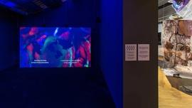 Dominique Koch, Holobiont Society, 2017. Instalación de video y audio. Con el soporte de Prohelvetia y city of Basel. | © CCCB, 2021 La Fotogràfica