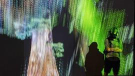 Marshmallow Laser Feast, Treehugger: Wawona 2016. Realidad virtual y audio. Con la colaboración de Natan Sinigaglia y Mileece l'Anson | © CCCB, 2021 La Fotogràfica