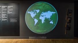Jaime Serra, El movimiento por los derechos de la naturaleza, 2021. Cultivo bacteriano: Rubén Duro | © CCCB, 2021 La Fotogràfica