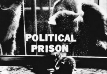 Joyce Wieland. Politics and Patriotism