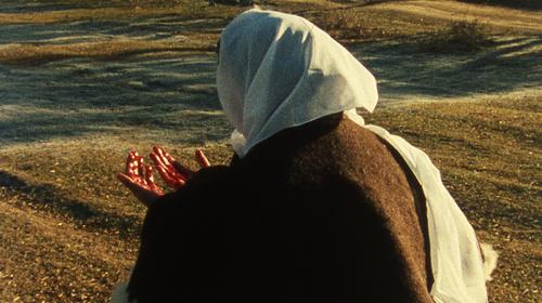 Els principis cardinals: Ana, de Margarida Cordeiro i António Reis