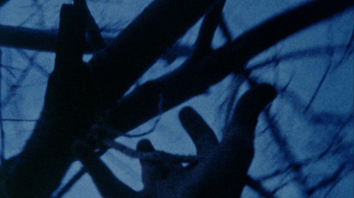 Stan Brakhage. Anticipation of the Night
