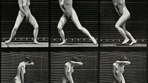 Exquisite Bodies. The genealogy of desire in avant-garde cinema
