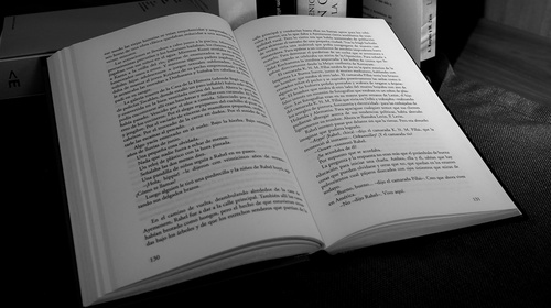 «Lectura fácil» de Cristina Morales