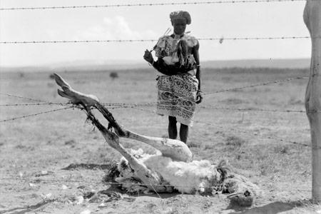 El ciberactivisme africà contra la censura
